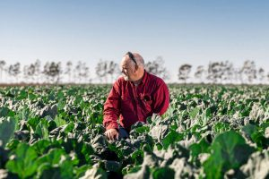 Agricultural Photography in queensland